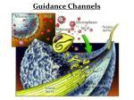 guidance channels