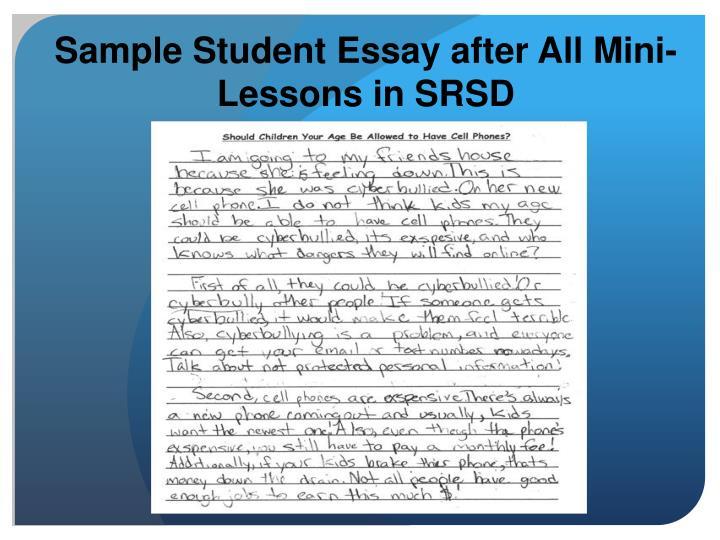 personal essay mini lessons