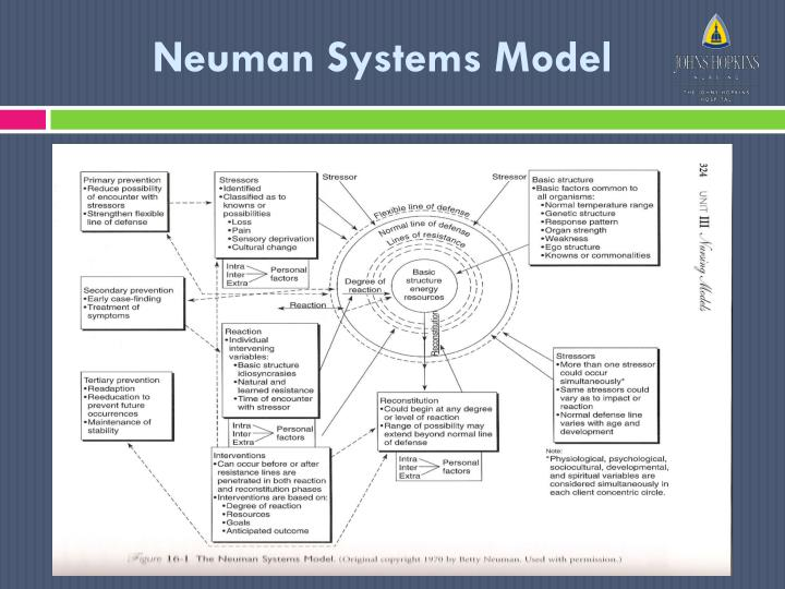 neumans system model 'neuman's systems model is based on the individual's relationship to stress, the reaction to it, and reconstitution factors that are dynamic in nature.