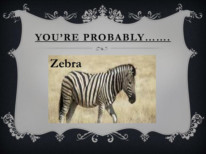 You're probably…….