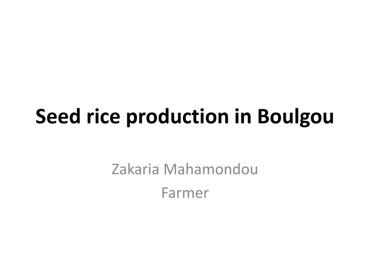 seed rice production in boulgou n.