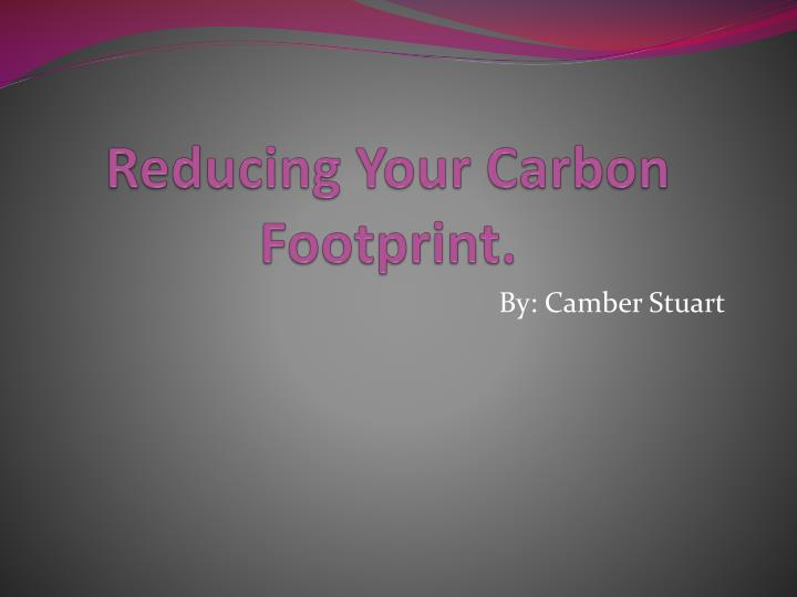 essays on reducing carbon footprint The value of reducing carbon footprints environmental sciences policies, reduce their carbon footprint and of this essay and no longer wish to.