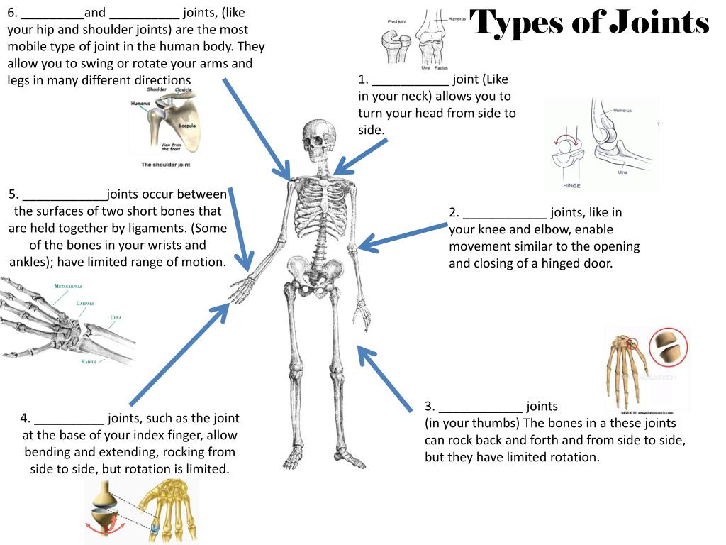 Ppt Types Of Joints Powerpoint Presentation Id2634593