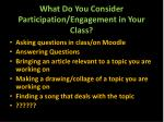 what do you consider participation engagement in your class