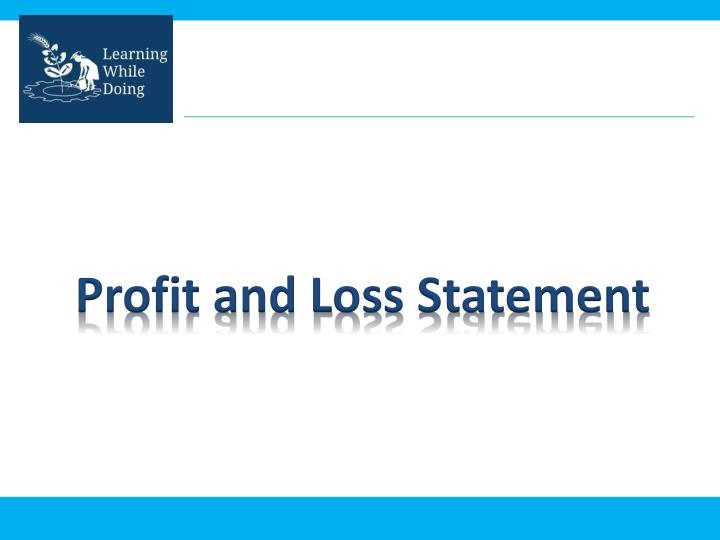 profit and loss statement n.