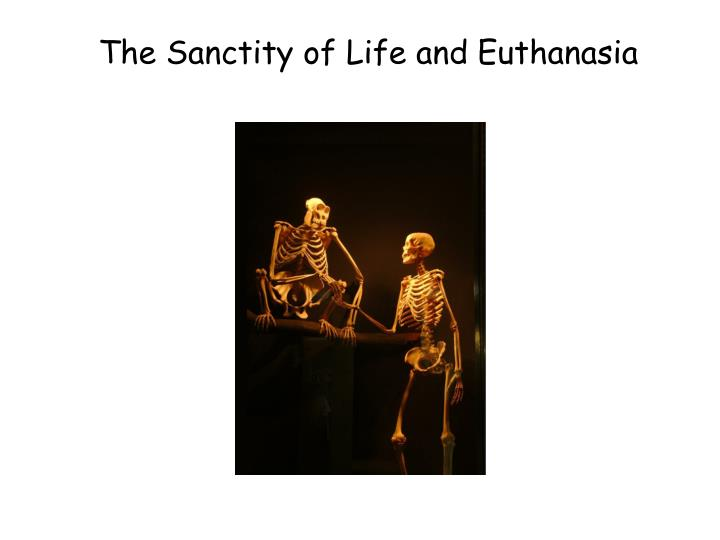 the sanctity of life and euthanasia n.