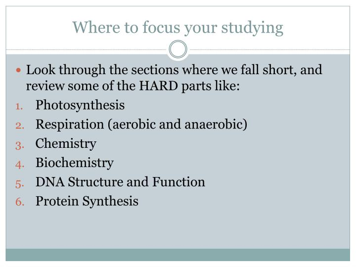 Where to focus your studying