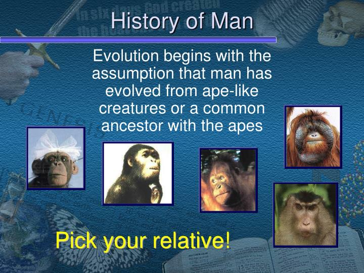 The history of human evolution ppt video online download.