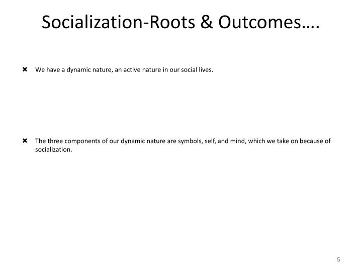 components of socialization