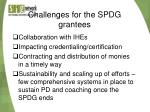 challenges for the spdg grantees