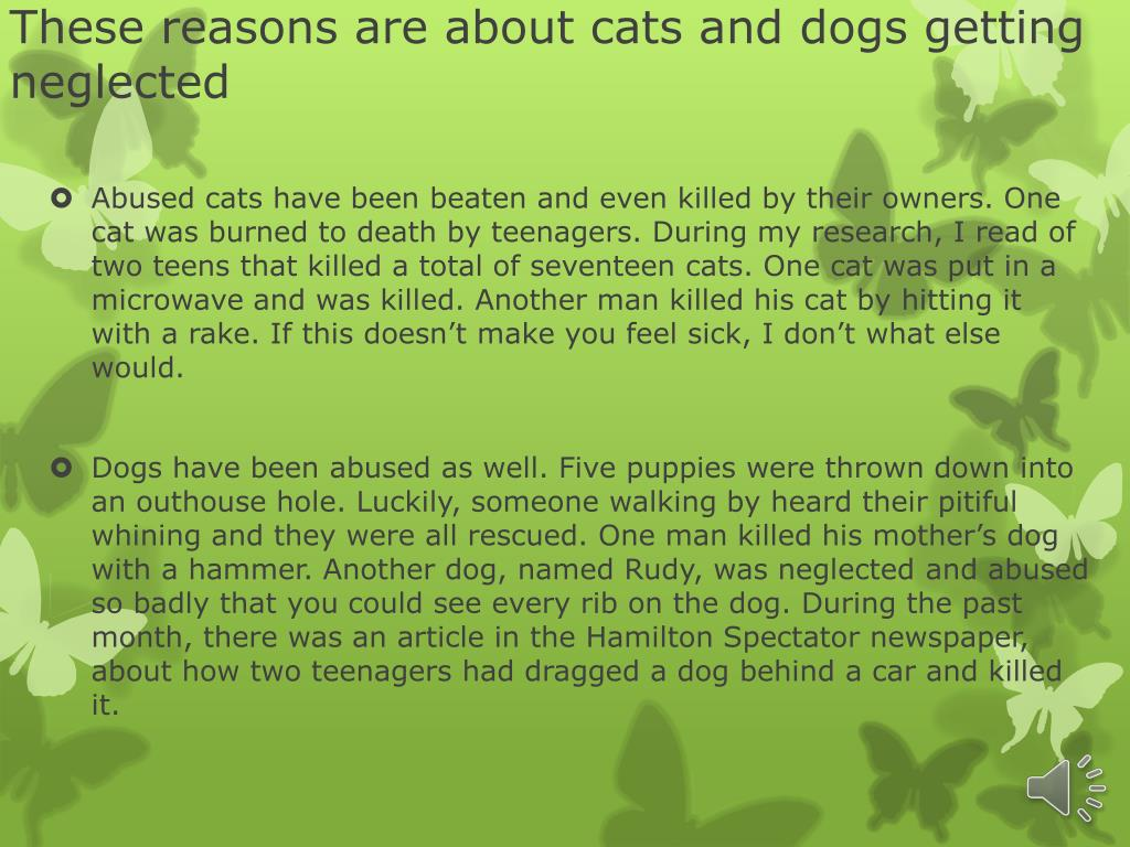 PPT - The animal treatment (abuse) PowerPoint Presentation - ID:2639281