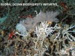 global ocean biodiversity initiative