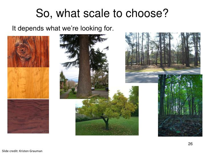 So, what scale to choose?