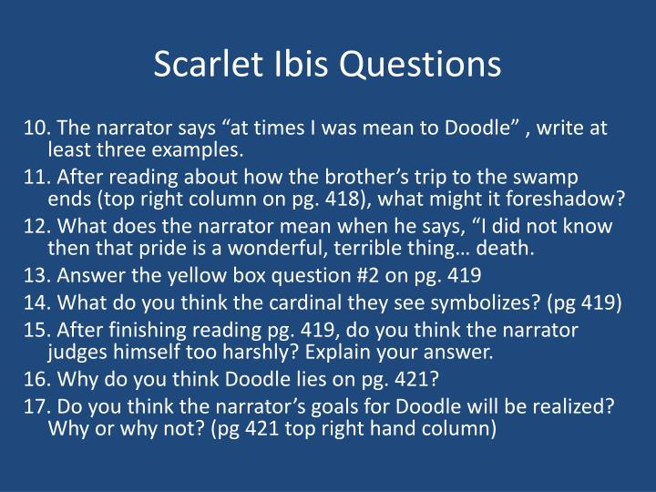 Scarlet Ibis Questions