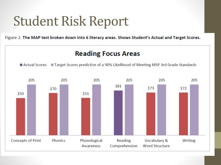 Student Risk Report