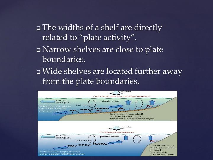 """The widths of a shelf are directly related to """"plate activity""""."""