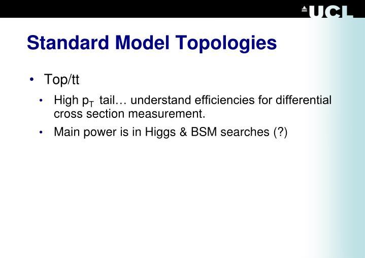 Standard Model Topologies