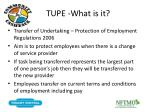 tupe what is it