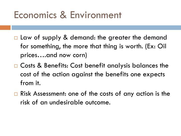 Economics environment