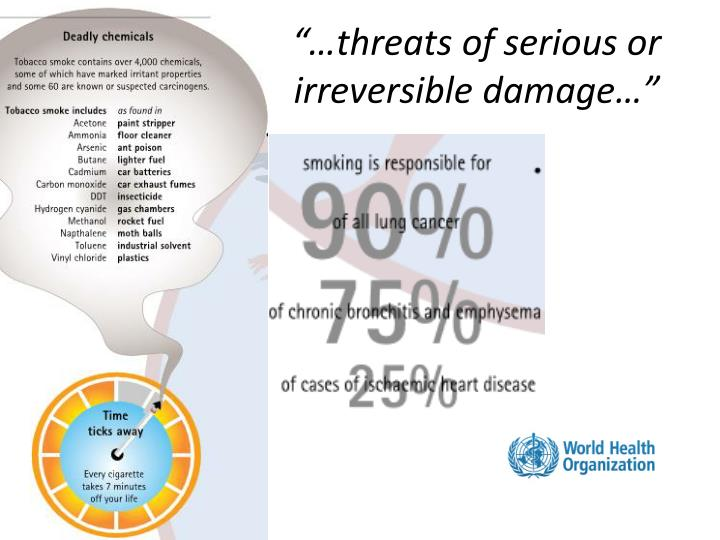 """""""…threats of serious or irreversible damage…"""""""