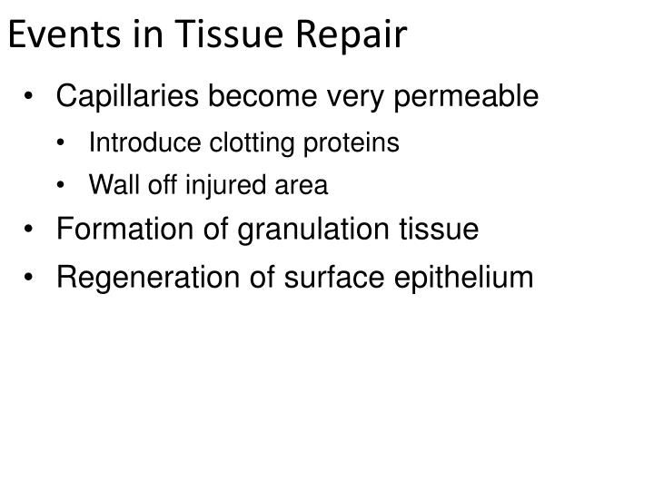 Events in Tissue Repair