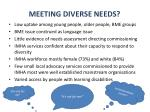 meeting diverse needs