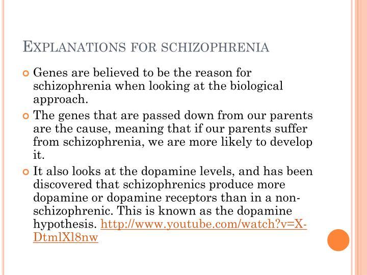 Explanations for schizophrenia