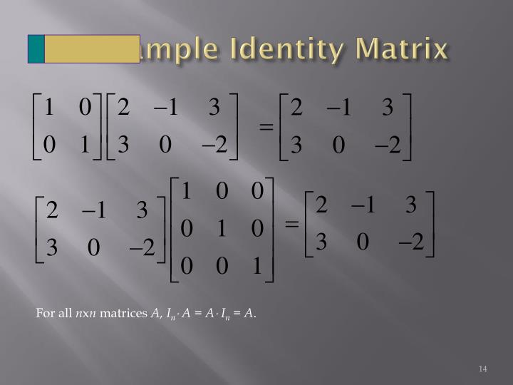 Example Identity Matrix