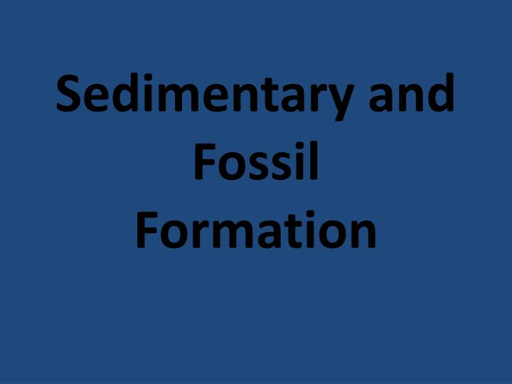 sedimentary and fossil formation n.