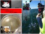 sediment traps particle camera nh 4 o 2 fluxes