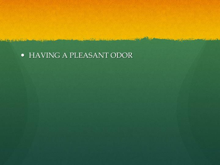 HAVING A PLEASANT ODOR