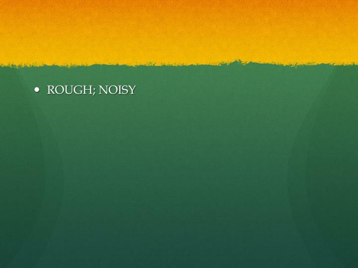 ROUGH; NOISY