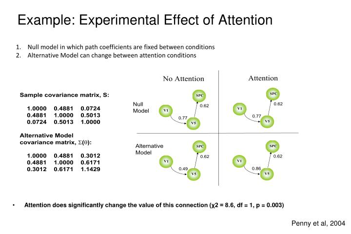 Example: Experimental Effect of Attention