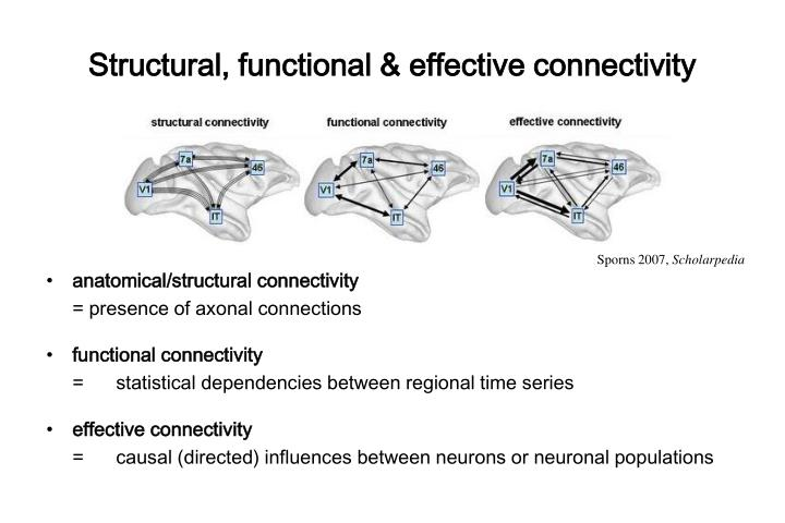 Structural, functional & effective connectivity