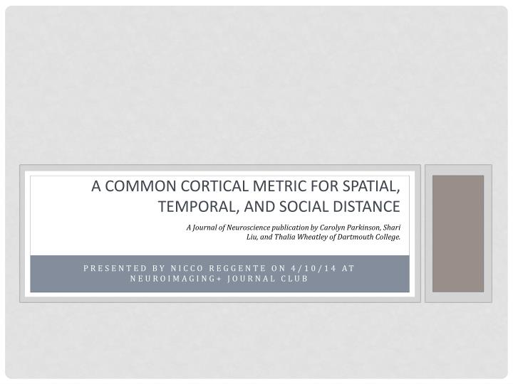 A common cortical metric for spatial temporal and social distance
