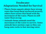 freshwater adaptations needed for survival