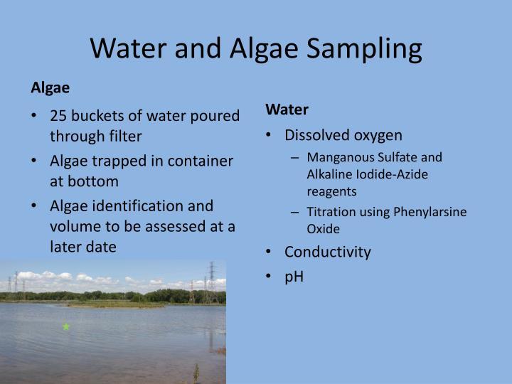 Water and Algae Sampling