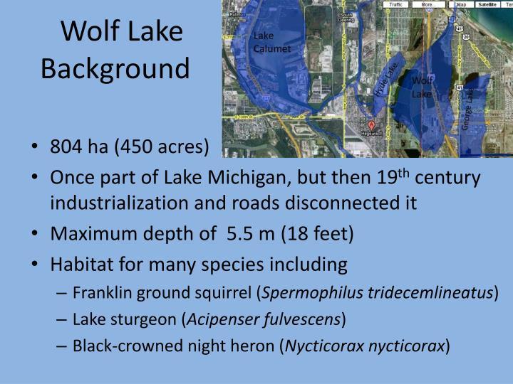 Wolf lake background
