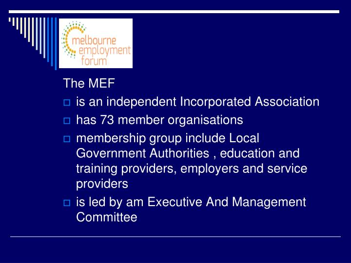 The MEF