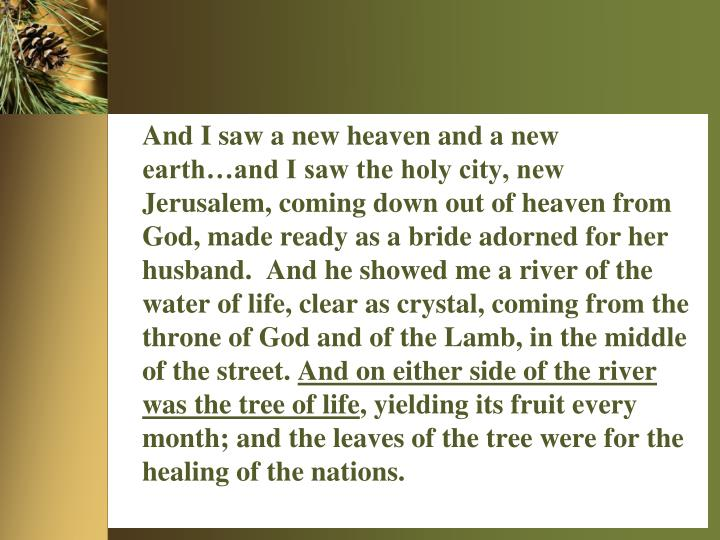 And I saw a new heaven and a new earth…and I saw the holy city, new Jerusalem, coming down out of heaven from God, made ready as a bride adorned for her husband.  And he showed me a river of the water of life, clear as crystal, coming from the throne of God and of the Lamb, in the middle of the street.