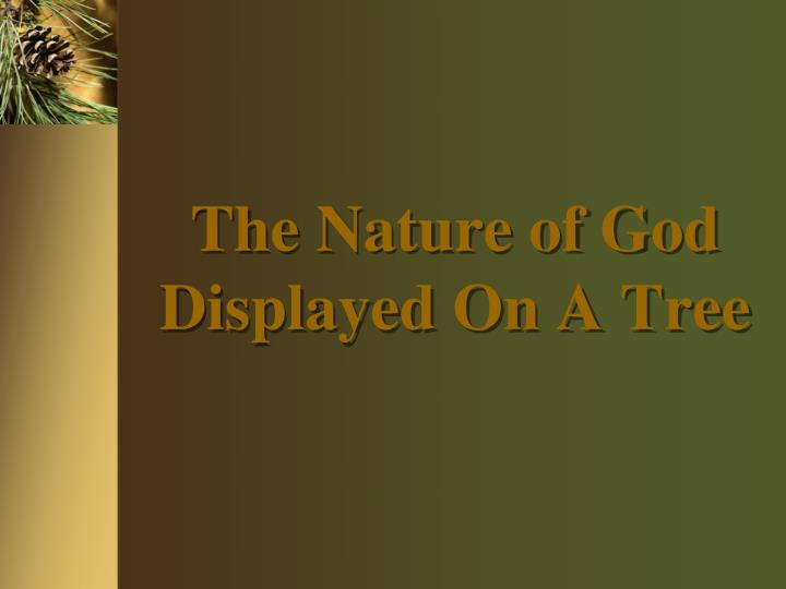 The nature of god displayed on a tree