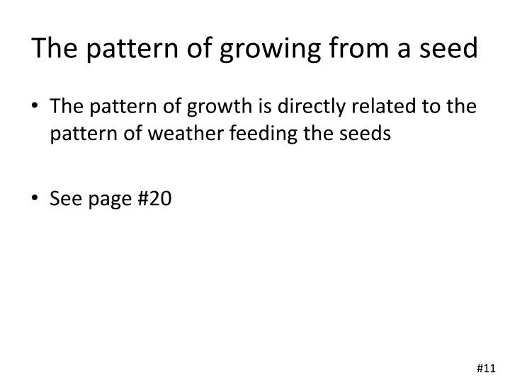 The pattern of growing from a seed