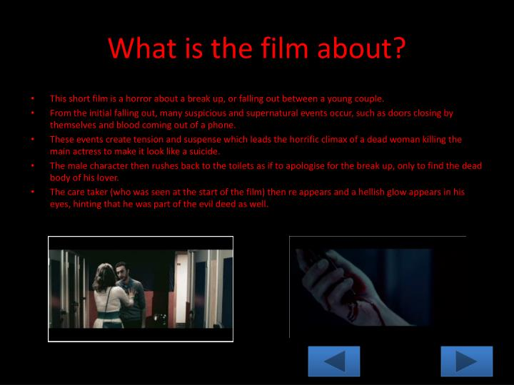 What is the film about?