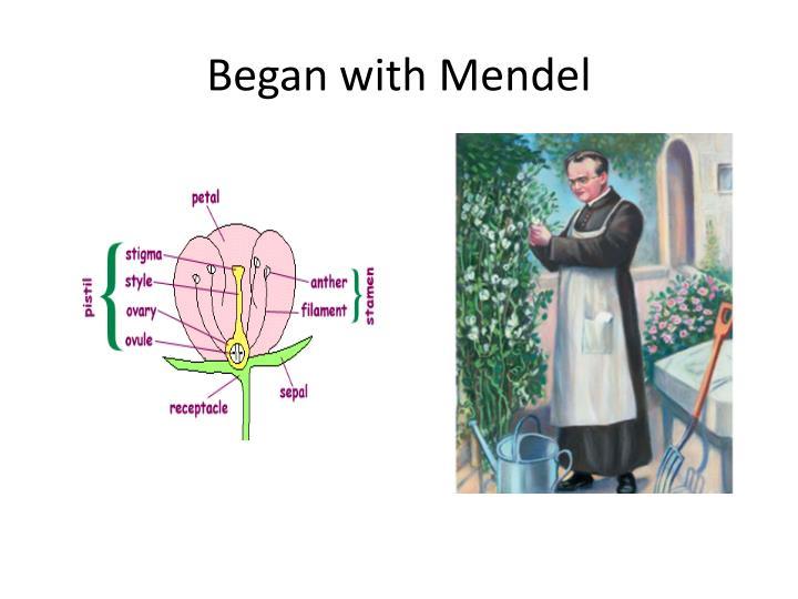 Began with Mendel