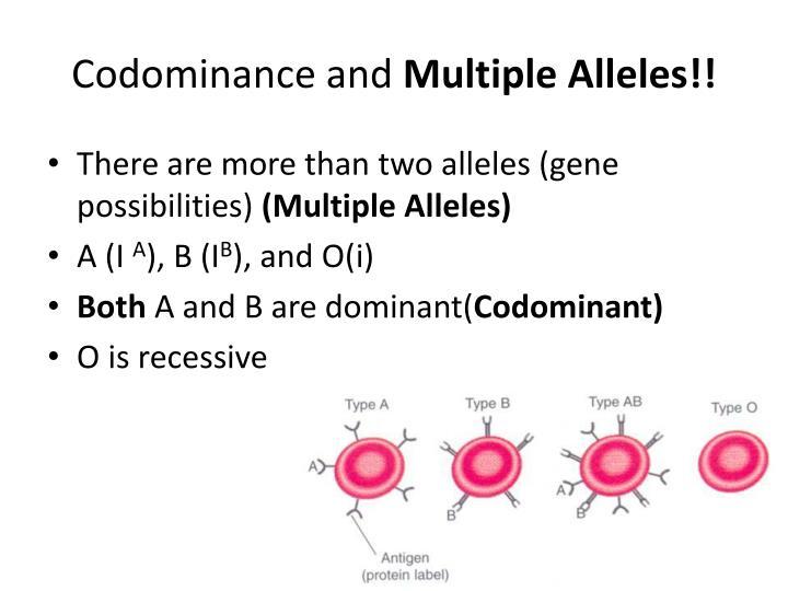 Codominance and
