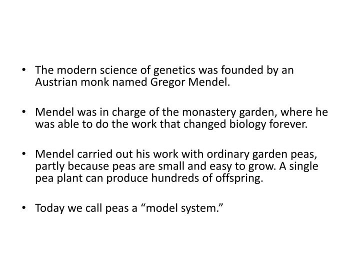 The modern science of genetics was founded by an Austrian monk named