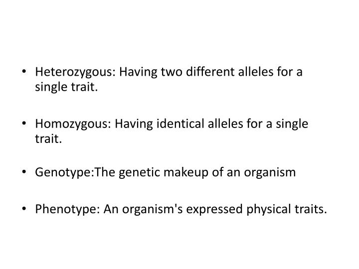 Heterozygous: Having two different alleles for a single trait.