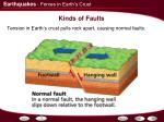 kinds of faults