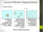 level of market segmentation1