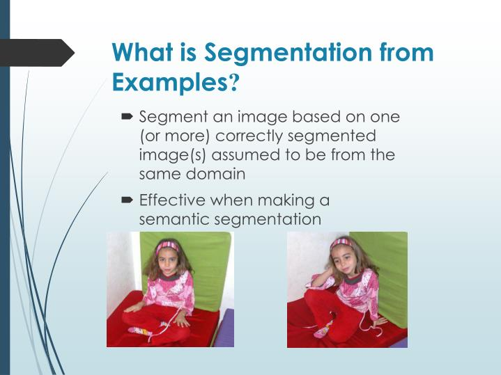 What is segmentation from examples
